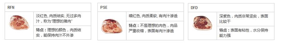 猪肉色差检测