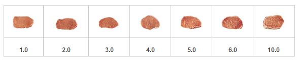 肉类食品大理纹